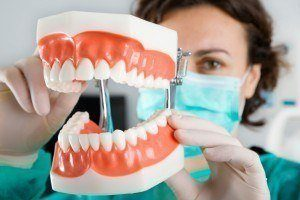 Surgeon holding up a model set of teeth to show how dental services at Advanced Dental Group can restore a smile.